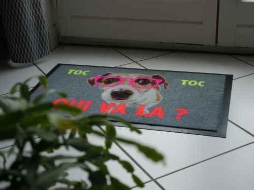 paillasson rigolo chien à lunettes roses plein d'humour